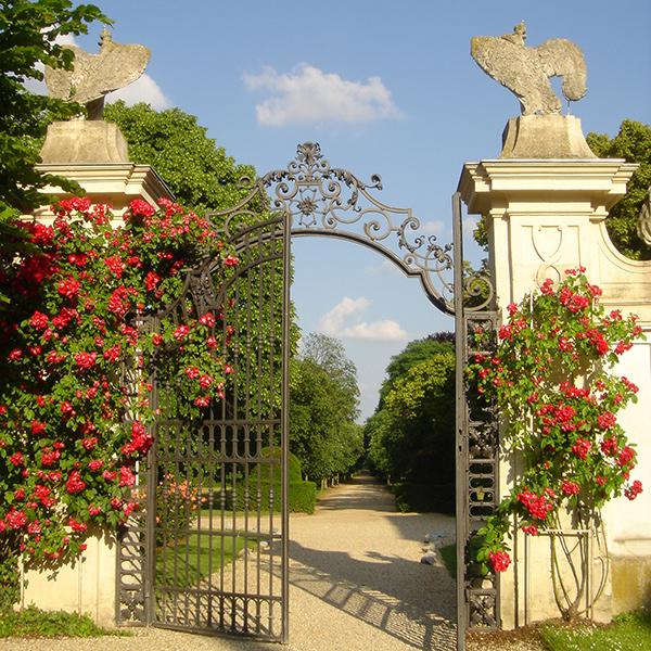 Romantischer Torbogen mit Rosen auf Schloss Halburn