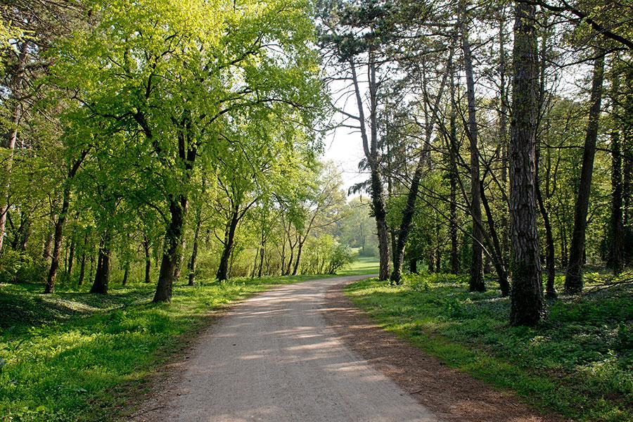 Schlosspark Halbturn